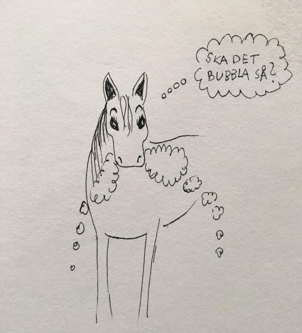 """Ska hästen """"skumma"""" imunnen?"""